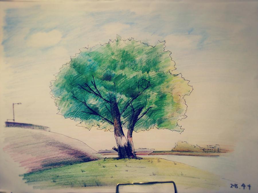 大树大树|其他绘画|插画|在空中---飘落的l