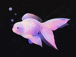 鱼-色彩练习