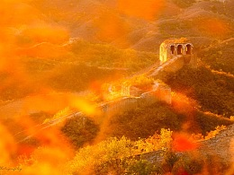 红叶和长城最配