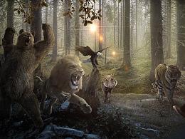 动物复仇者联盟
