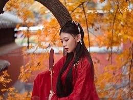 『落叶红尘』