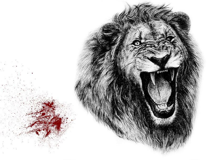 动物圆珠笔画