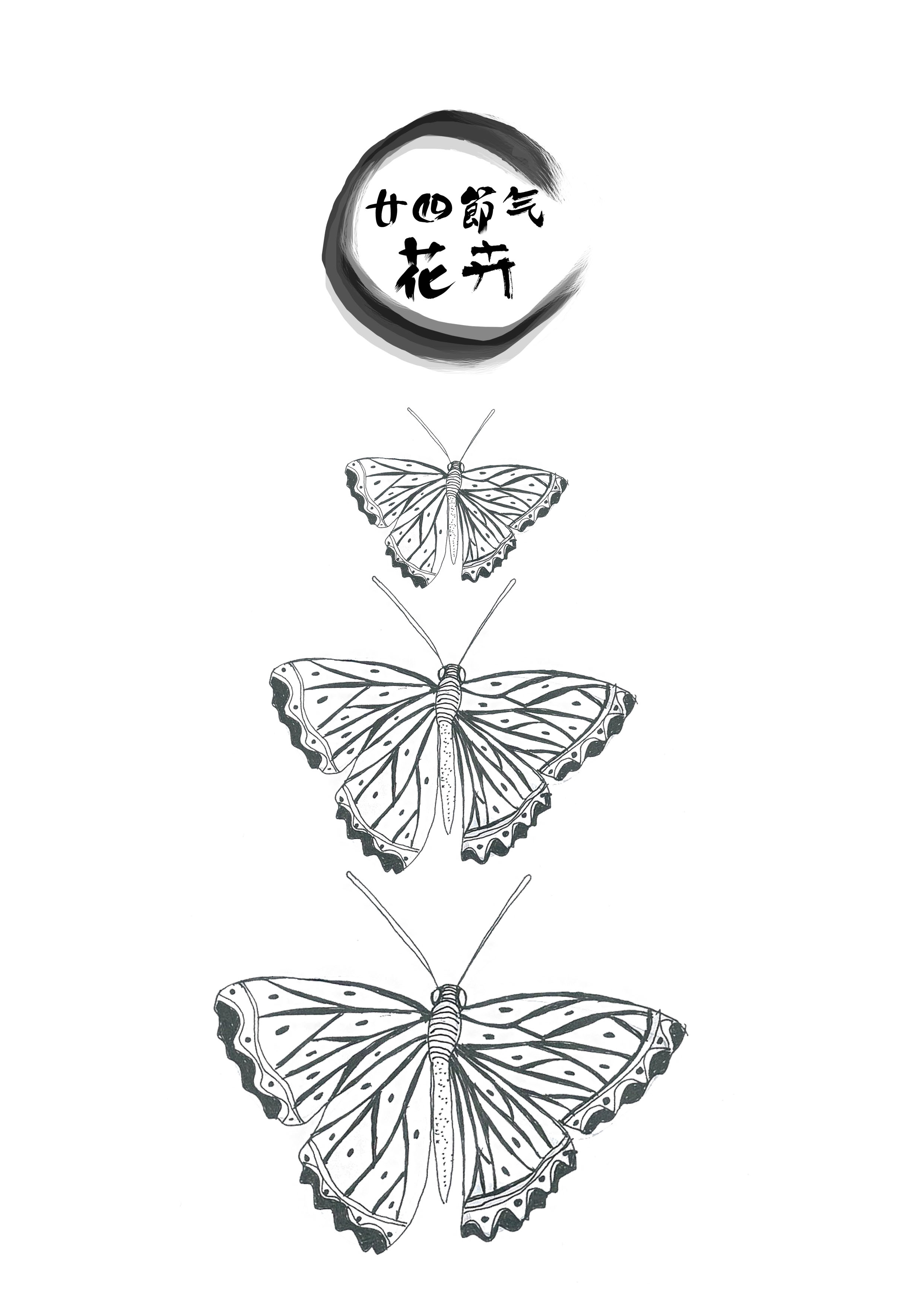 二十四节气花卉插画设计