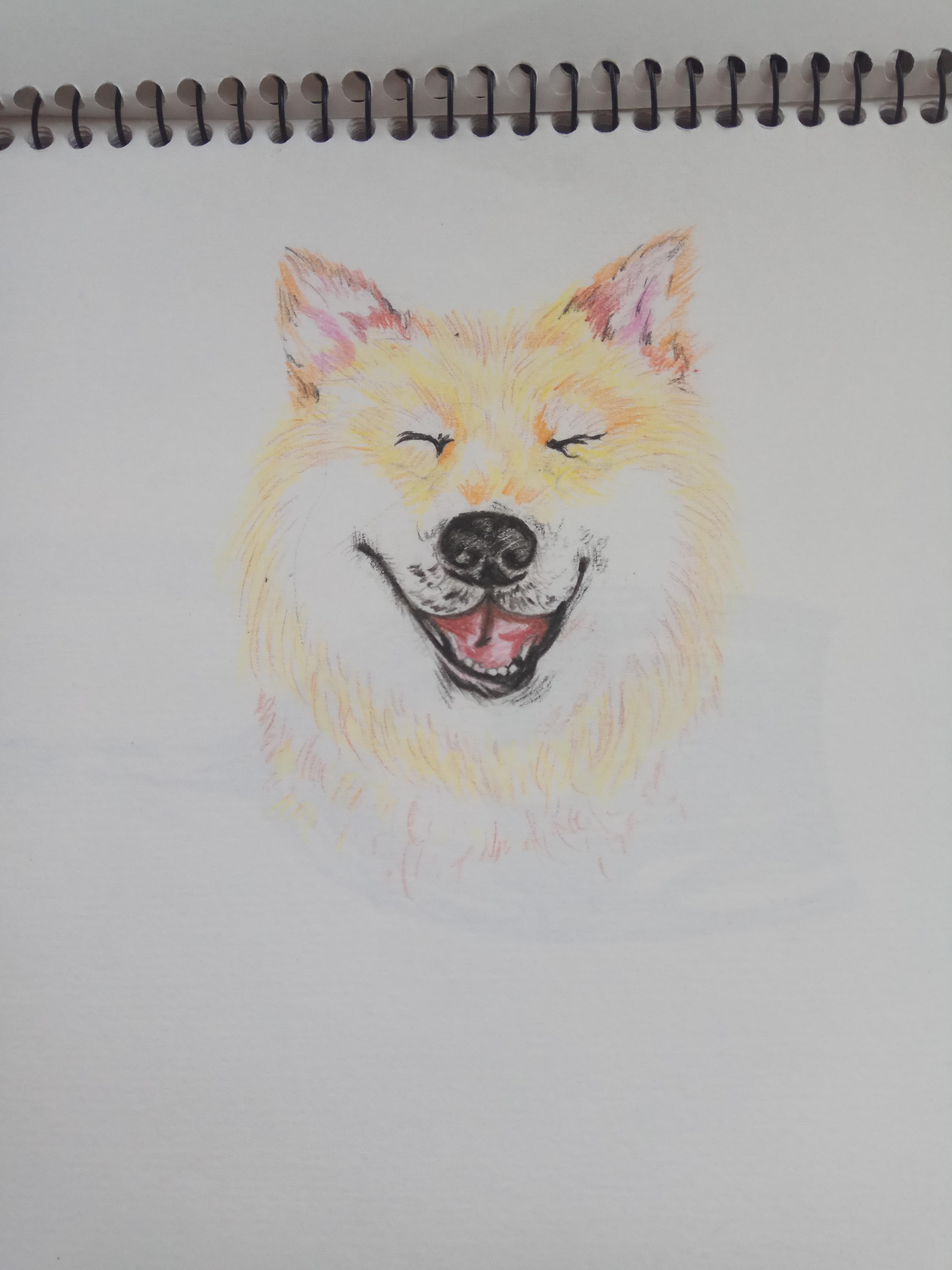 彩铅笔画|纯艺术|彩铅|削笔 - 原创作品 - 站酷