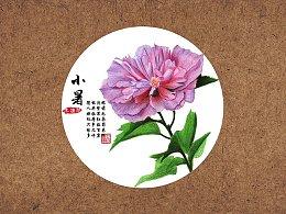 【驴大萌彩铅教程231】24节气花卉手绘图鉴—小暑木槿