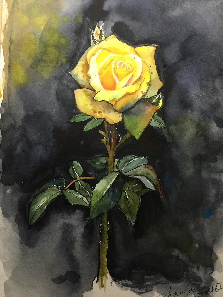 水彩,色粉,油画棒临摹