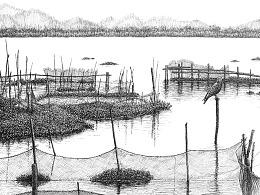 钢笔画【在水一方】
