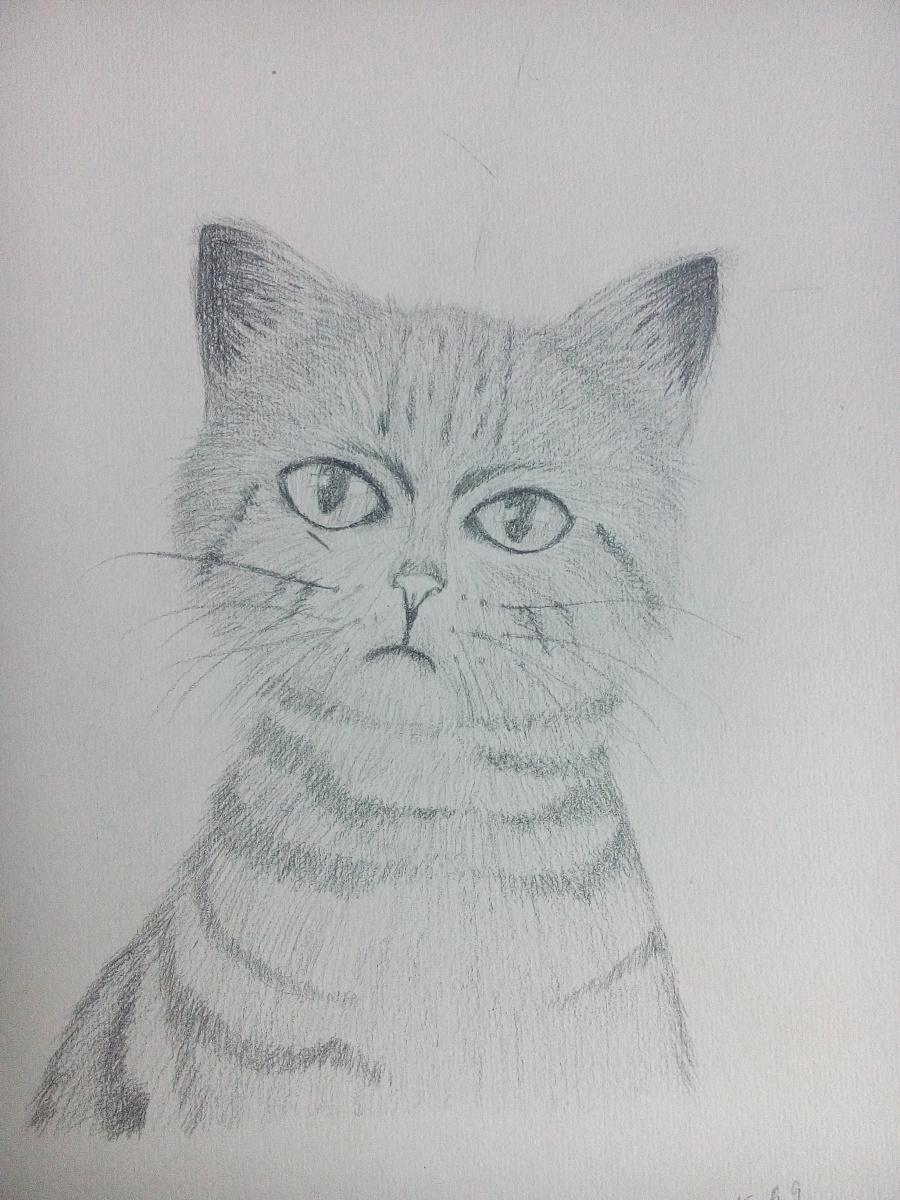 原创作品:手绘素描练习图片
