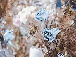 《躁点花束1》——丰鸽摄影