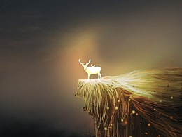 《平凡之鹿》