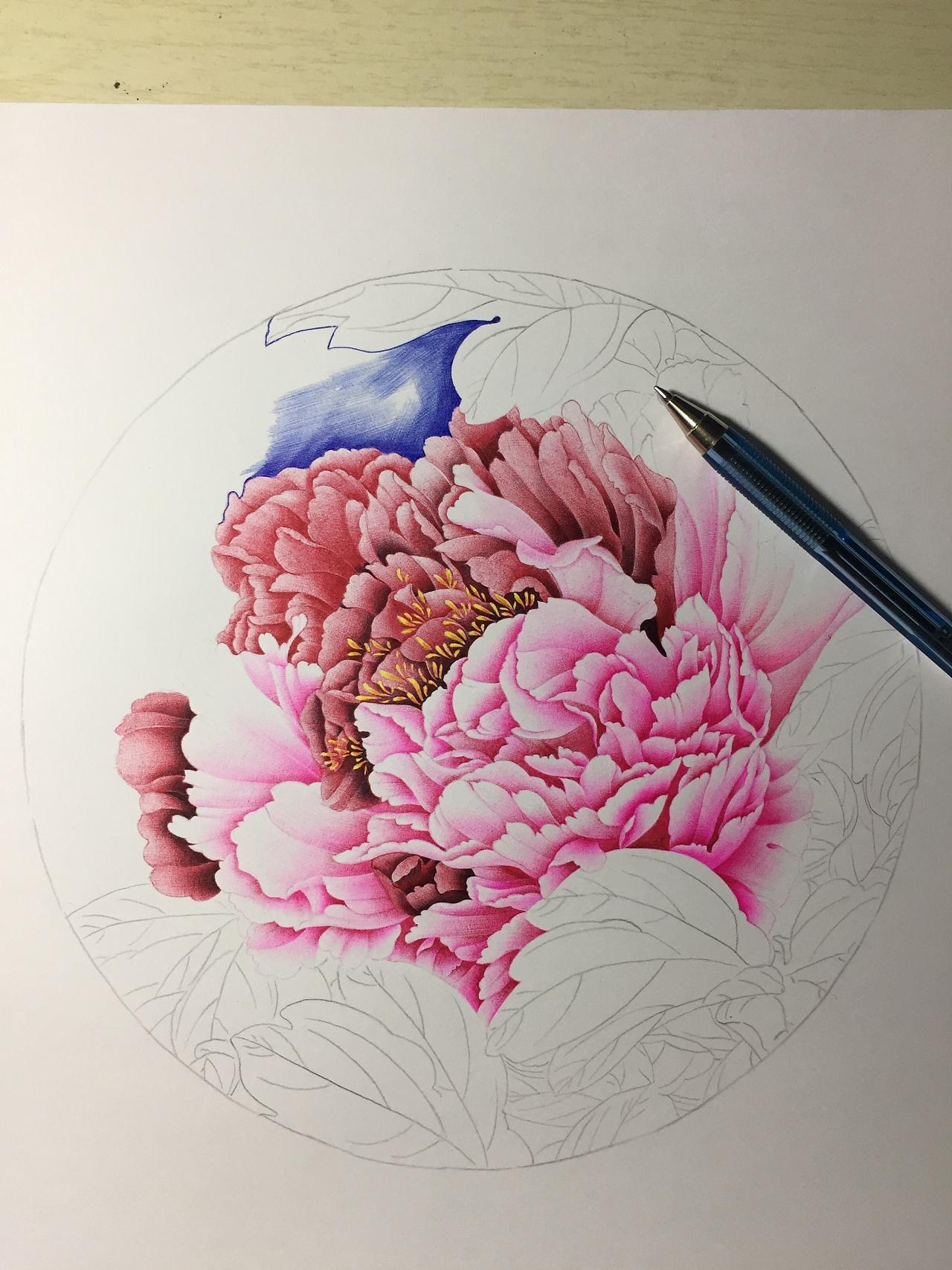 圆珠笔画牡丹系列|纯艺术|彩铅|一诺手绘 - 原创作品图片