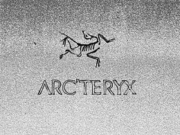 ARCTERYX-始祖鸟