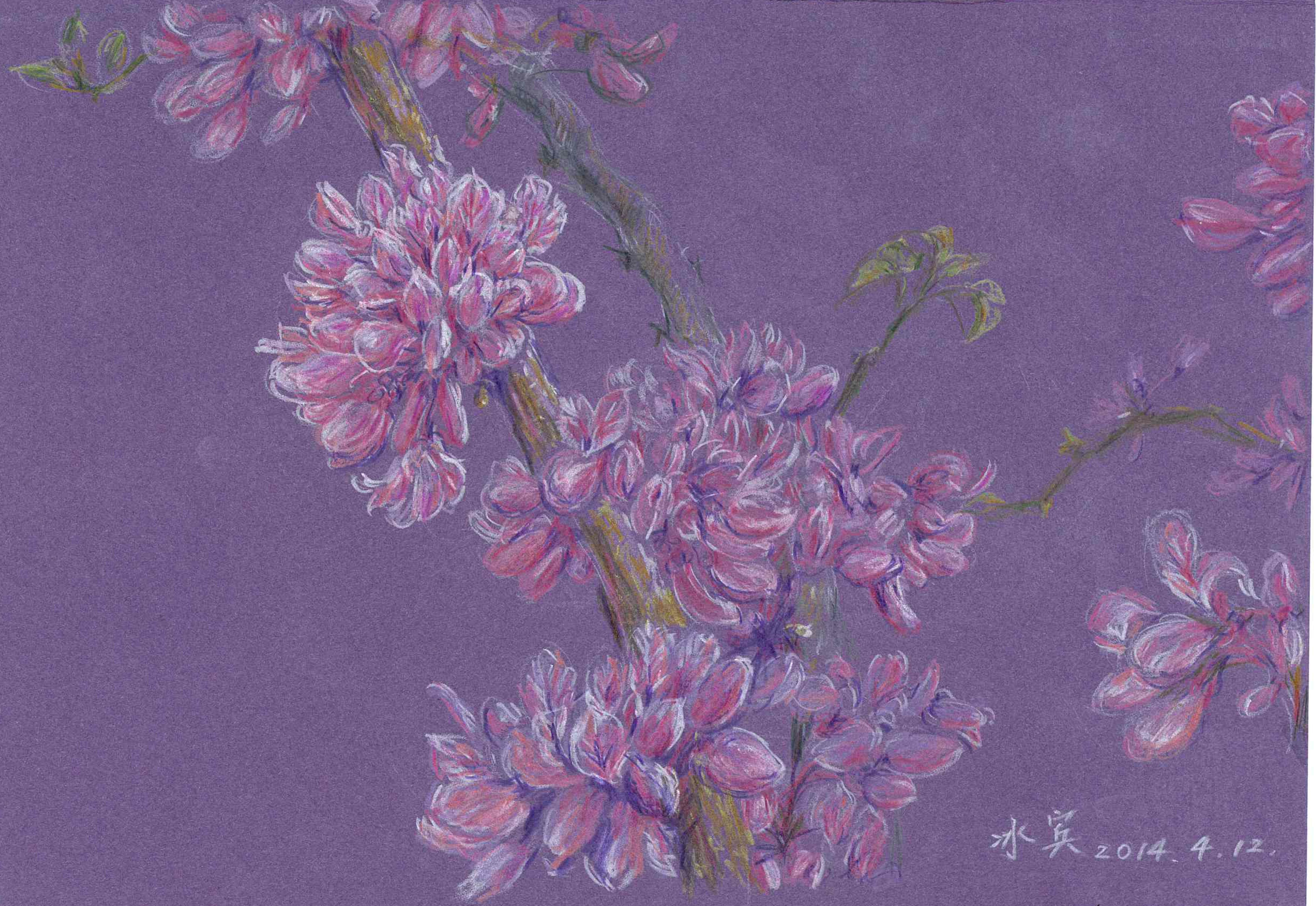 彩铅手绘风景画紫色
