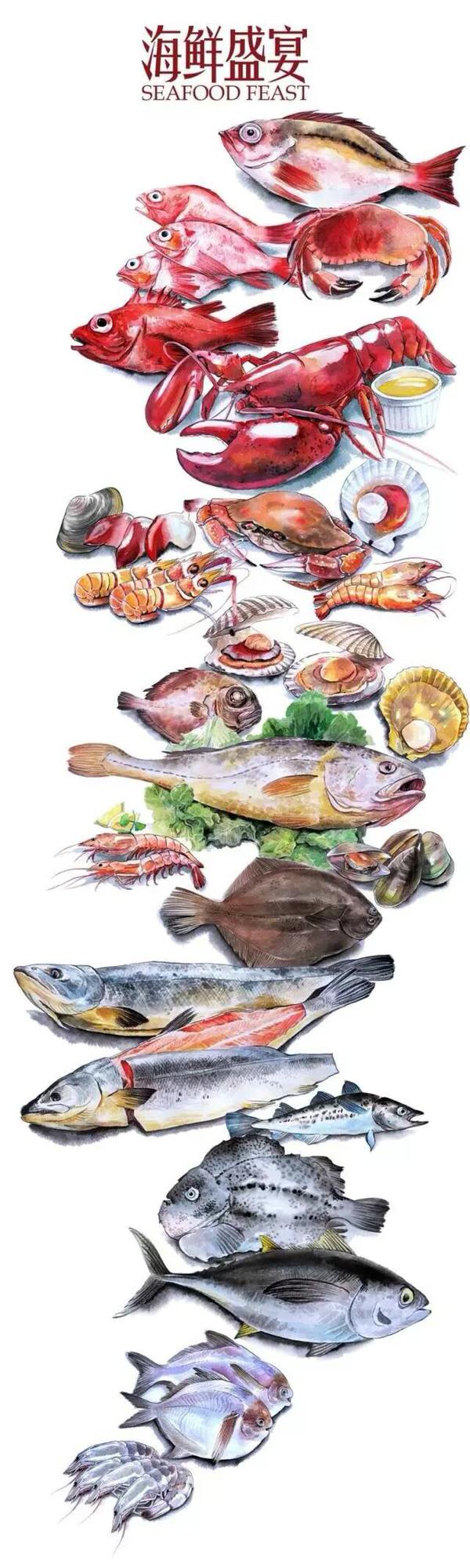 手绘海鲜大餐