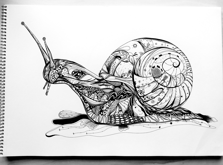 蜗牛三声部合唱谱