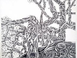钢笔画[老梅新枝]1