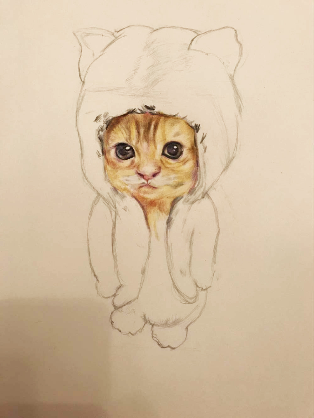 一张光盘手工制作小猫