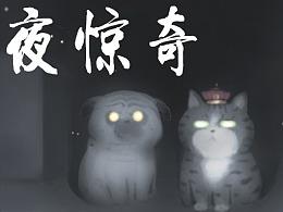 """午夜""""凶""""猫,背后发凉"""