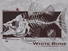 Animal Skeleton  2019