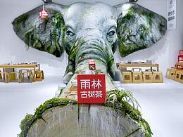 把原始雨林搬进茶空间——2019 雨林古树茶·生态茶空间