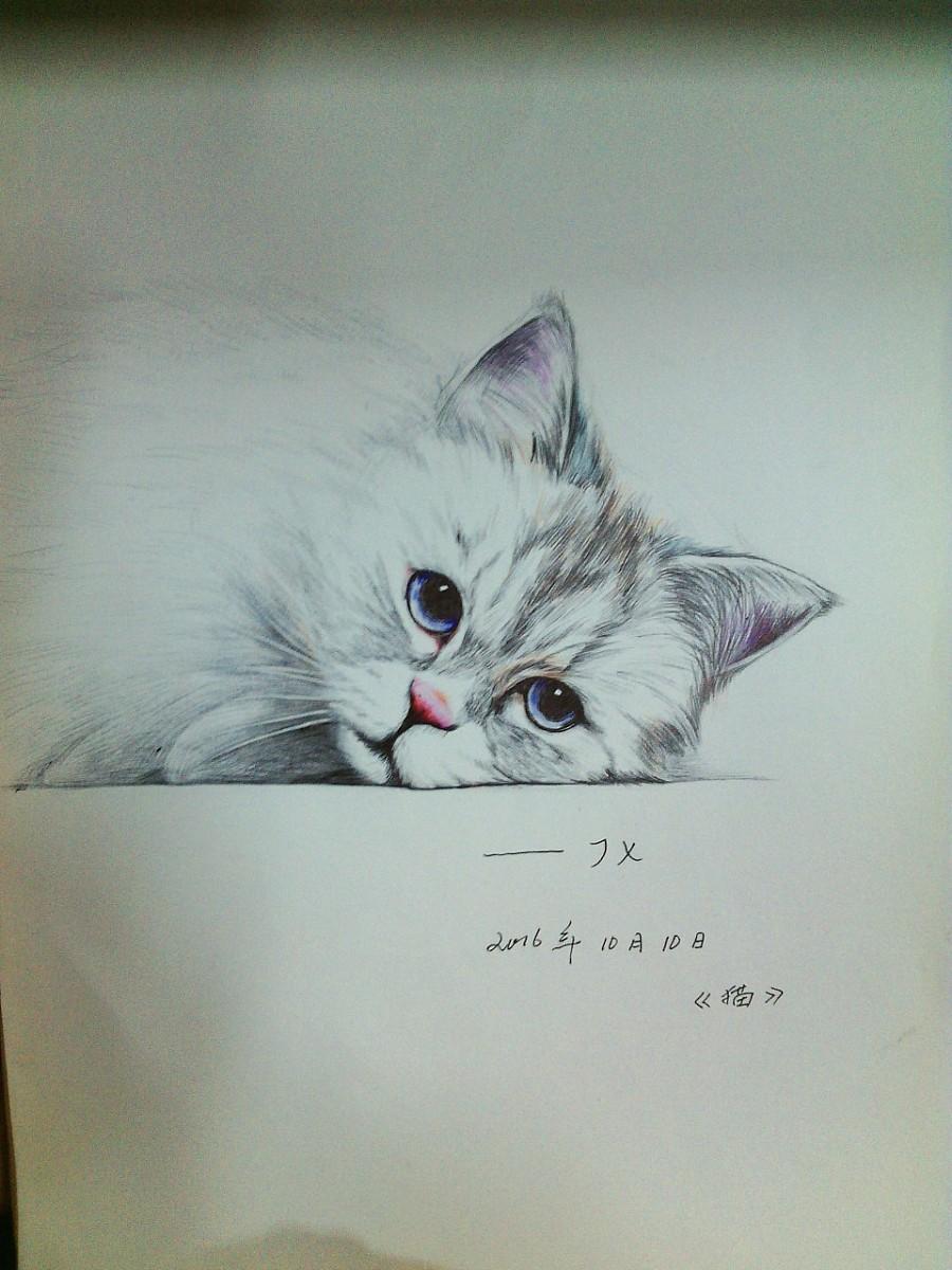 小猫手绘图片大全