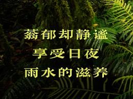 DynaFont古籍字体──华康古籍黑檀