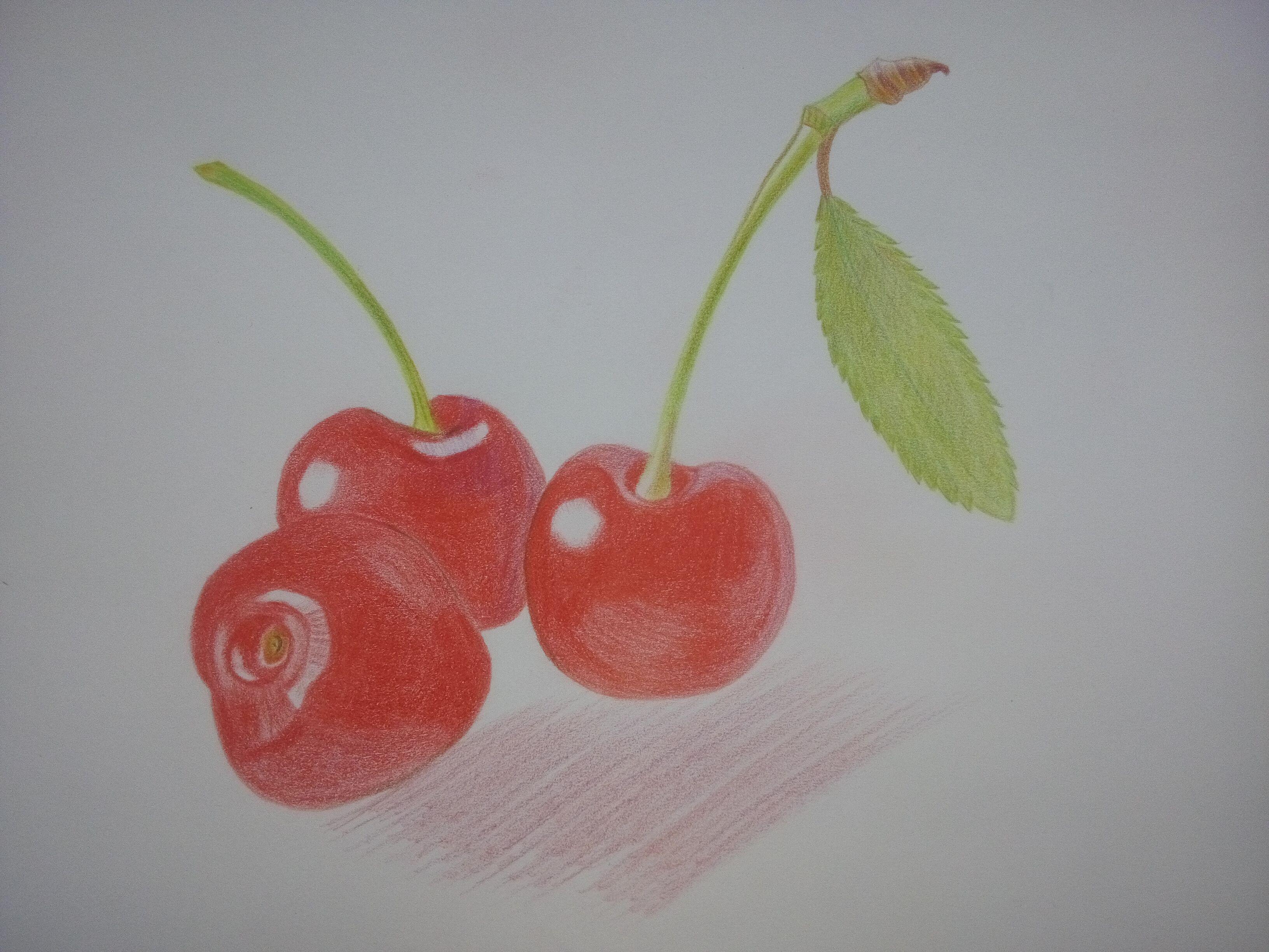 彩铅临摹 樱桃