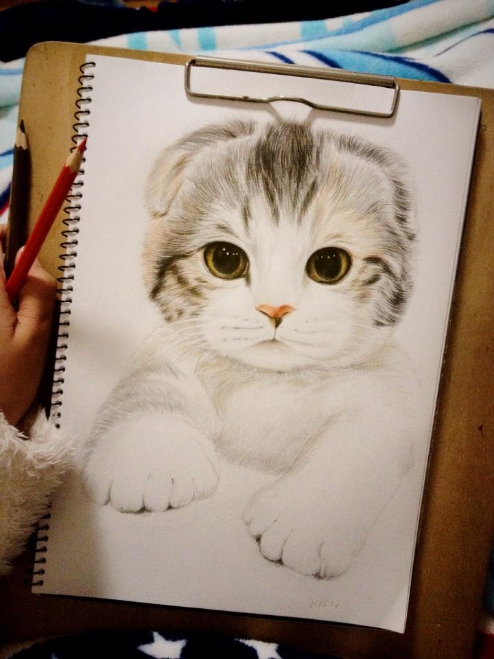 彩铅手绘猫咪图片大全