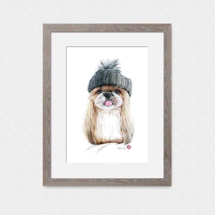 彩铅手绘—戴帽子的狗狗 彩铅 纯艺术 yescabbage
