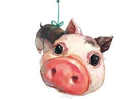【萌宠by雪娃娃】猪猪飞啦