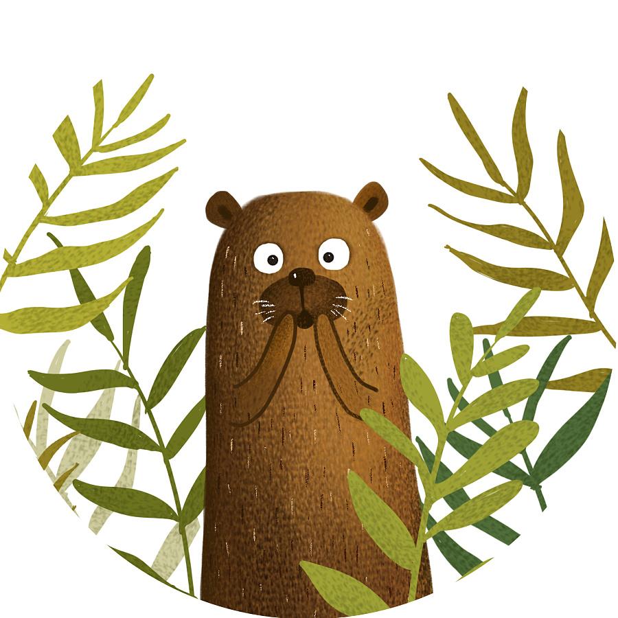 森林里有哪些小动物