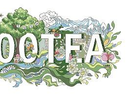 云南3200年茶祖古树茶叶包装插画