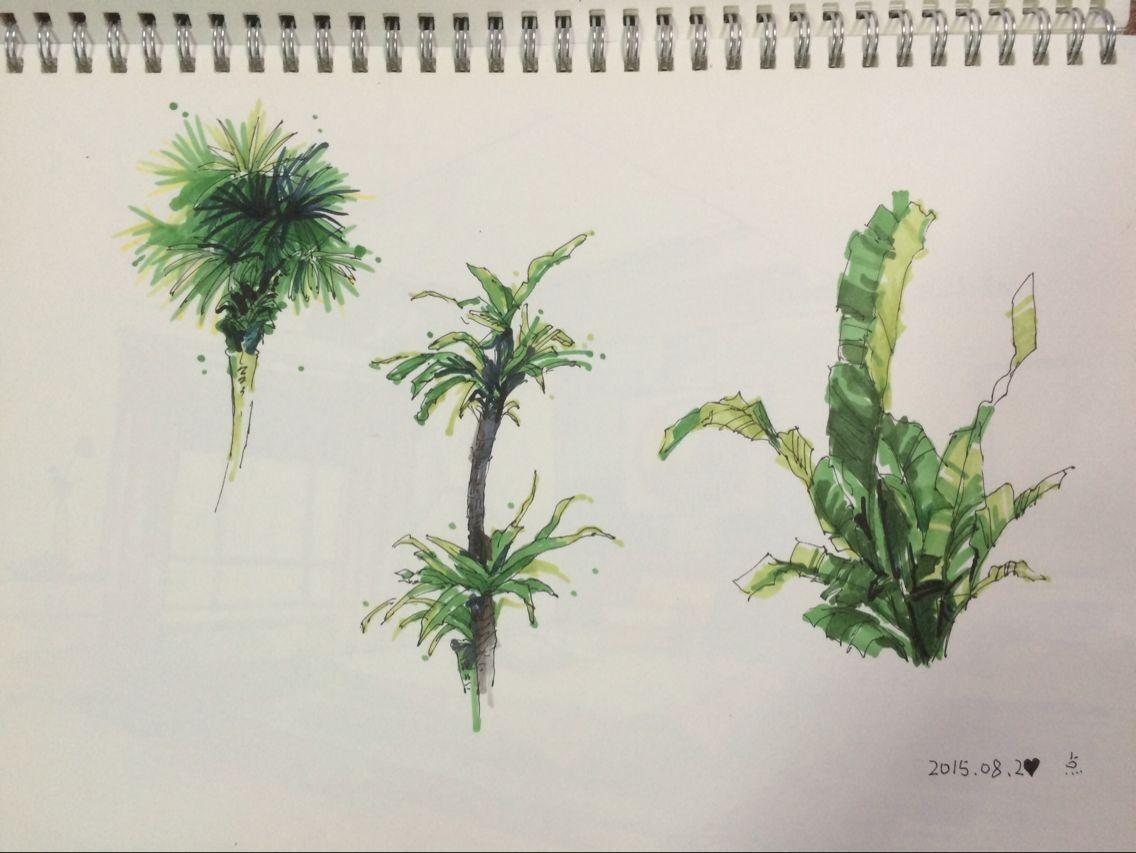 室外手绘图练习-临摹