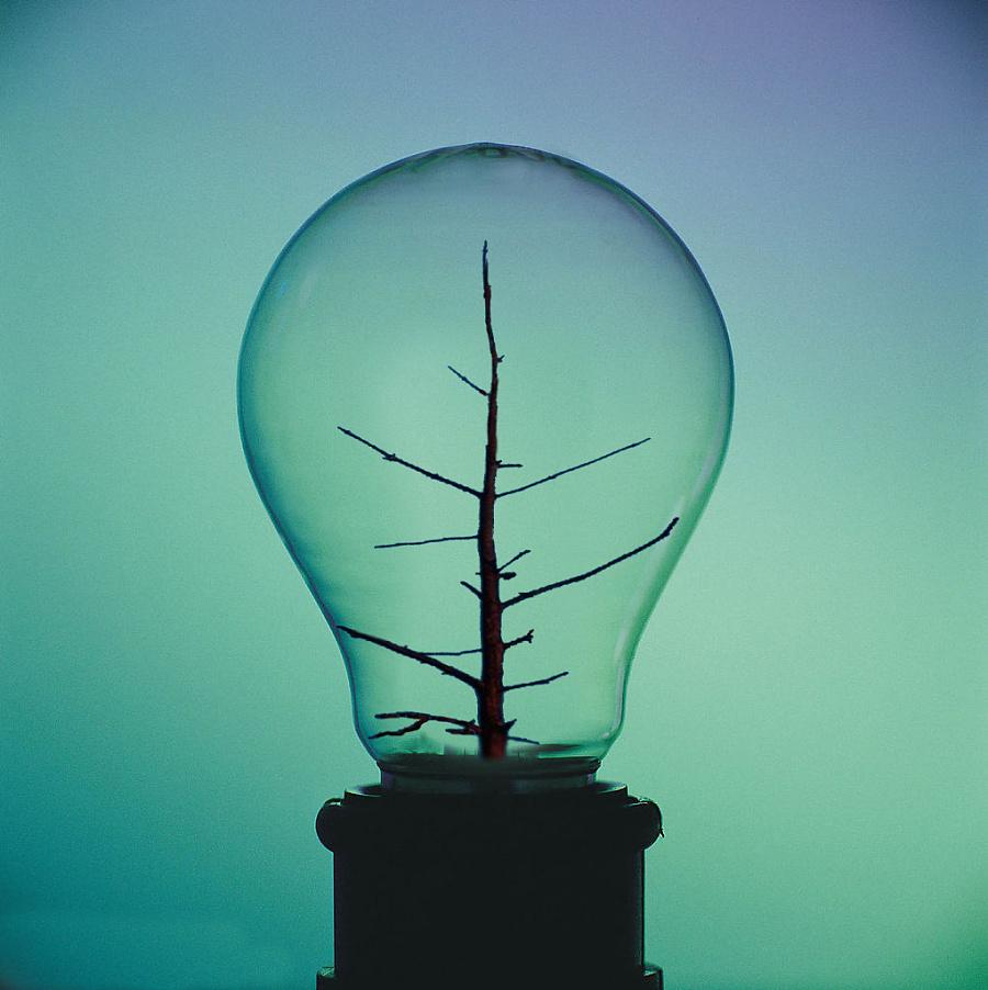 万能表测量灯泡电路图