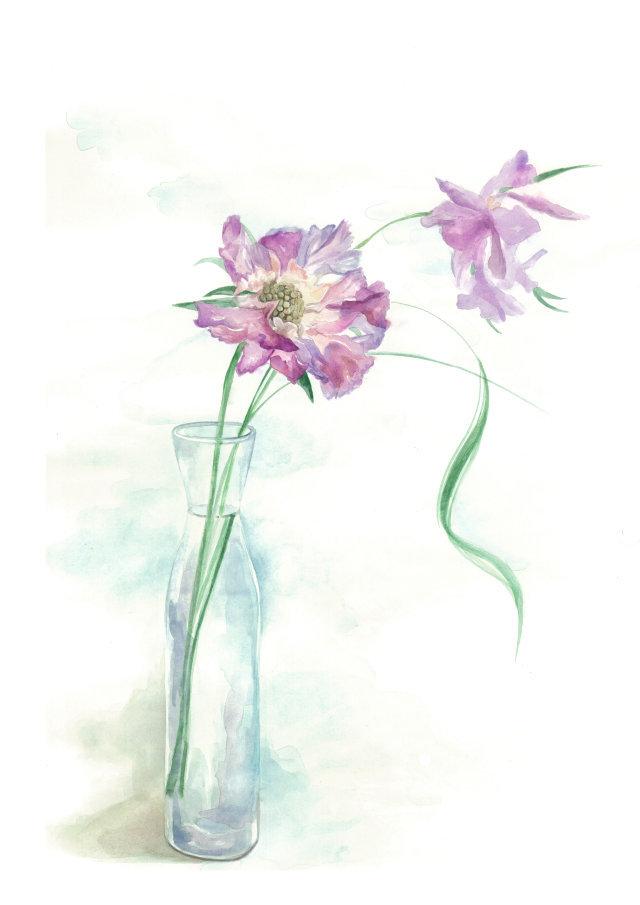 小清新手绘水彩插画_花卉组