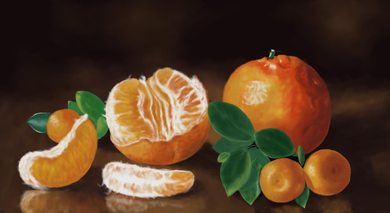 橘子手绘(临摹)