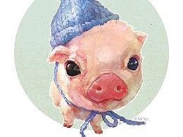 【萌宠by雪娃娃】毛线帽猪猪