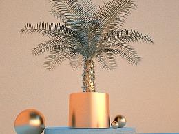 植物渲染练习-2.28