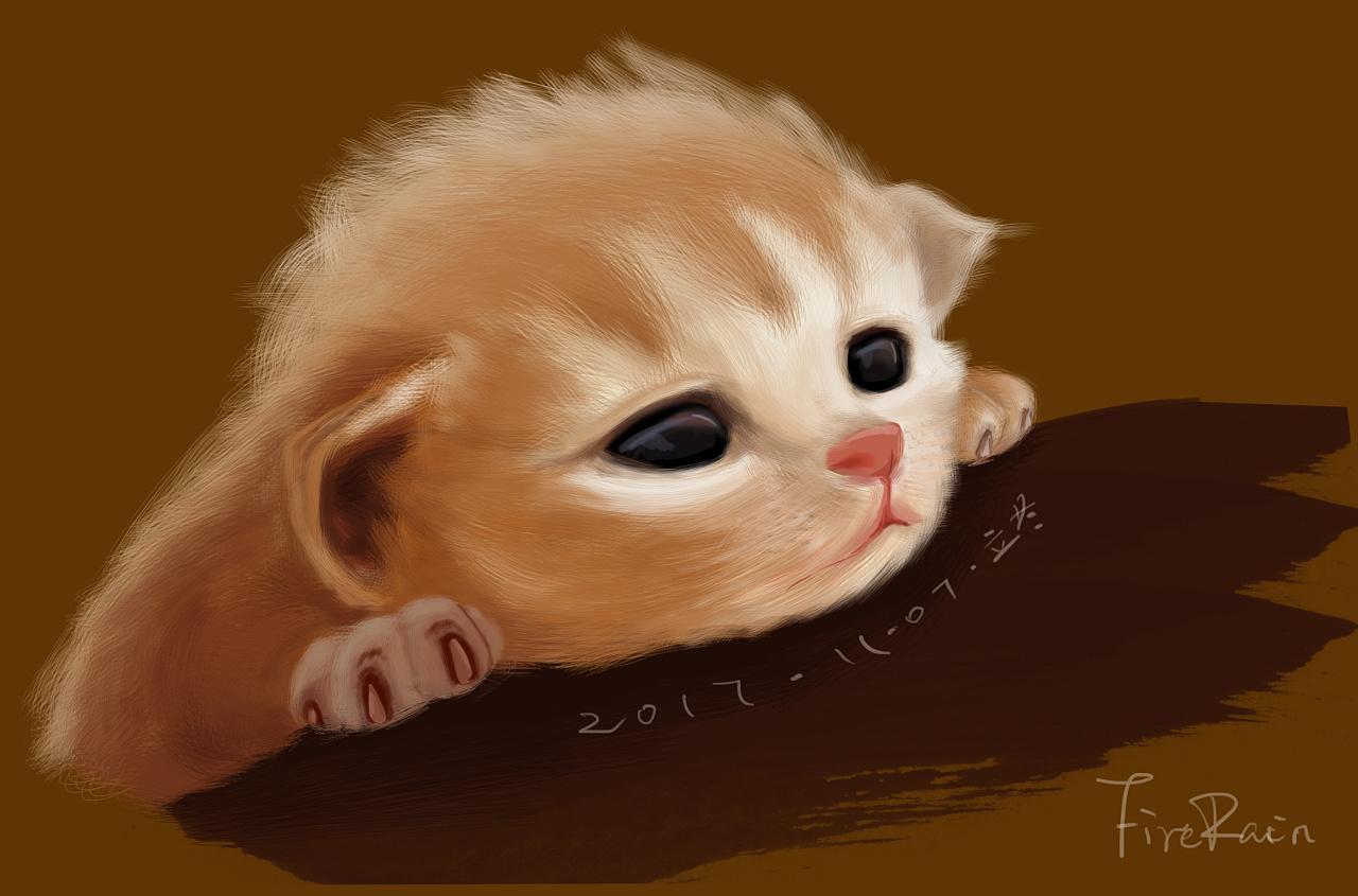 最萌主子们了,最近有空想画画主子们,第一只是萌萌哒小猫