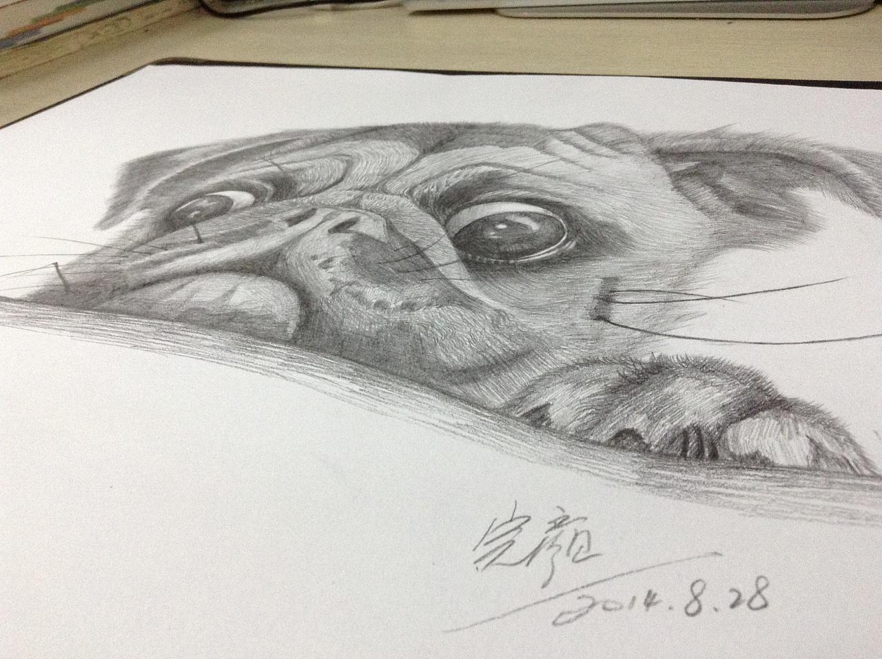 铅笔手绘 一只可爱的小狗狗