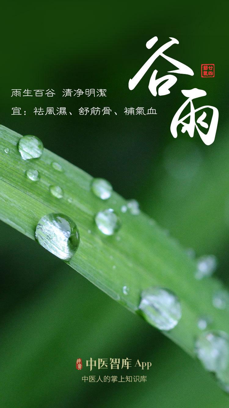24节气:谷雨