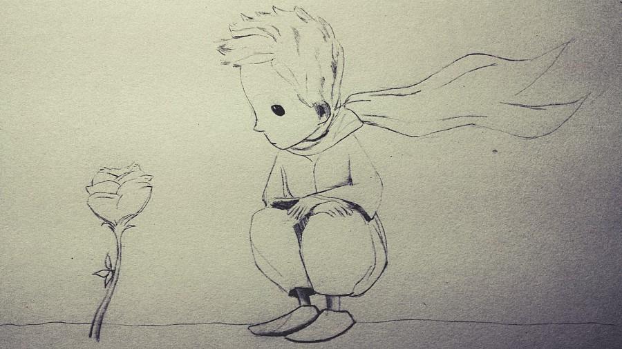 小王子|素描|纯艺术|植物猎手