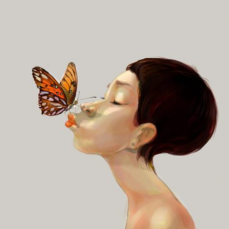 蝴蝶画法图片