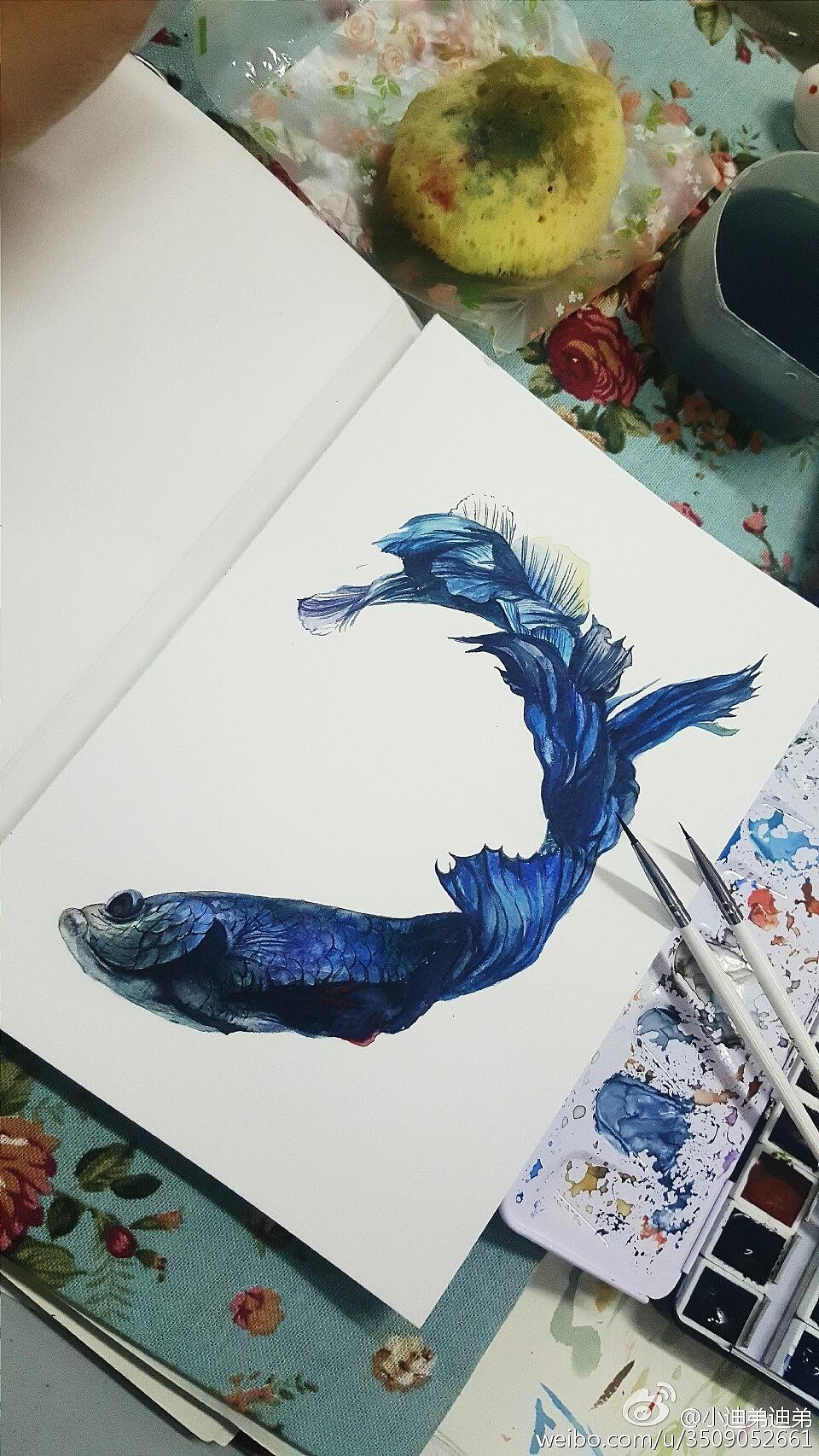 水彩手绘鱼