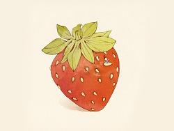 阿梅的水果