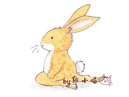 手绘水彩瑜伽兔子(8张图)