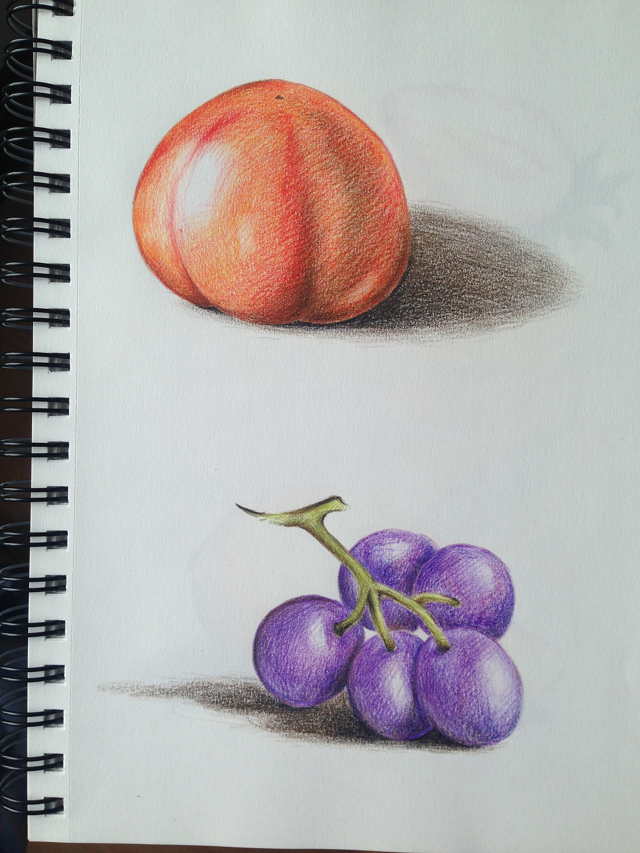 初学彩铅手绘练习图