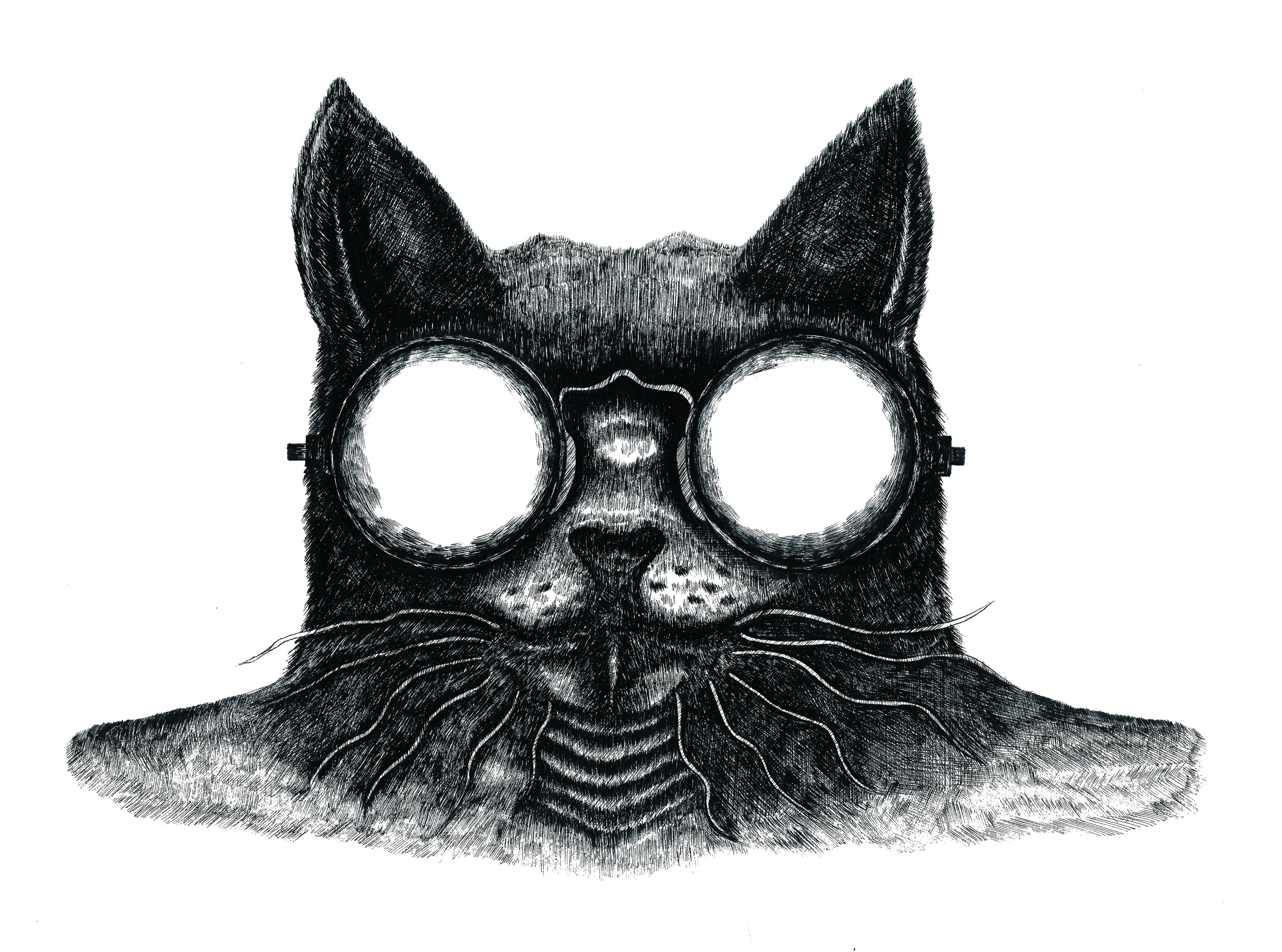 猫王的·摇滚时代