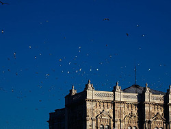 【旅行的意义】-君士坦丁堡的朝阳-