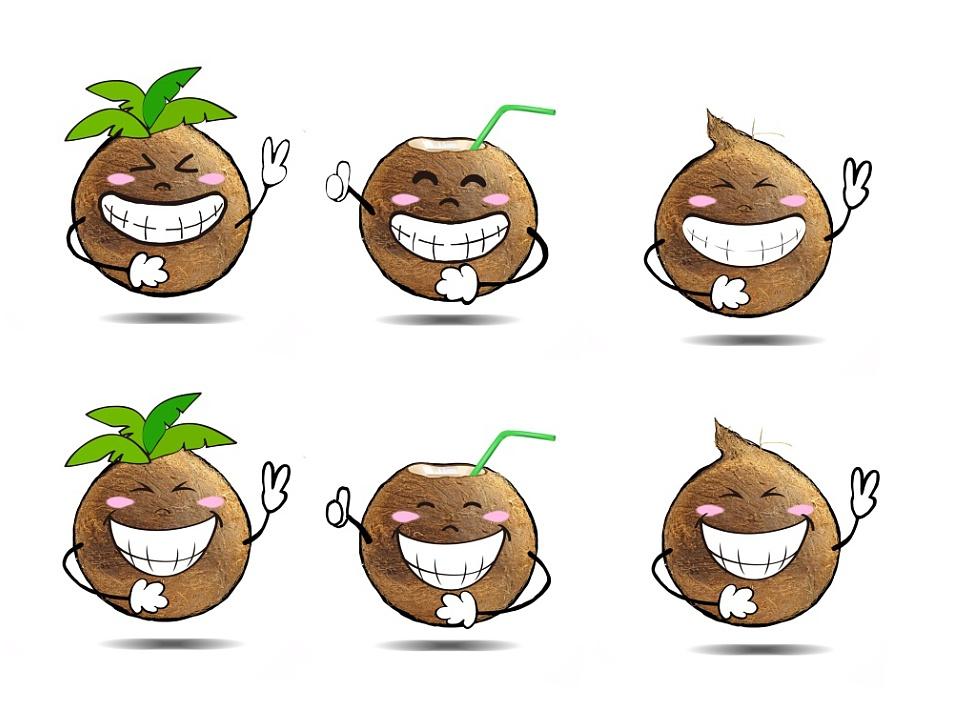 真实的椰子 简单手绘